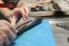 il-dongione-pesce-10